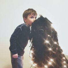 Interview with the Mother of the Little Boy and His Huge Dog - My Modern Met
