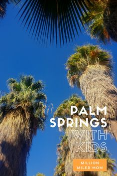 Head to the desert for family fun including a side trip to Joshua Tree National Park! #palmsprings #palmspringswithkids #ranchomirage #roadtripswithkids #joshuatree #joshuatreenationalpark #jtree #nationalparkswithkids #travelwithkids #california #californiatravel California City, Visit California, California Travel, National Parks Usa, Joshua Tree National Park, Travel Guides, Travel Tips, San Diego Travel, Travel Reviews