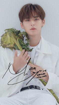 Mingyu with a vegetable Woozi, Jeonghan, Wonwoo, Jisoo Seventeen, Kim Min Gyu, Carat Seventeen, Meanie, Pledis Entertainment, Fandom