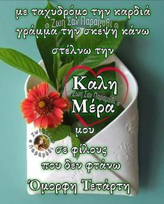 Good Afternoon, Good Morning Good Night, Beautiful Pink Roses, Spirituality, Sayings, Quotes, Greek, Mom, Pictures