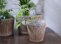 Abari Zinc Pot - Narrow