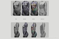 Anatomy Next - Anatomy of Figure: Block-outs