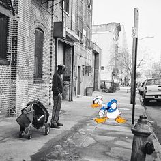 Donald in real world