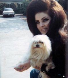 quintessential 60s feminine chic: Priscilla Presley style inspiration, she is.