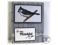 Gratitude Challenge:  Inspired by Stamping, Crafty Colonel, Winter Birds, Thank You Card