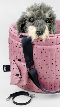 Pink Dog Beds, Cute Dog Beds, Puppy Beds, Dog Beds For Small Dogs, Princess Dog Bed, Dog Carrier Purse, Designer Dog Carriers, Dog Coat Pattern, Dog Clothes Patterns