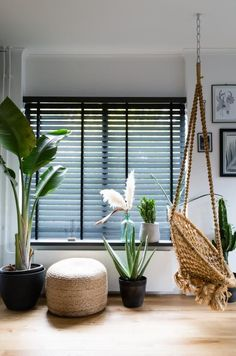 Wooden venetian blinds from JASNO will help you create a unique atmosphere in every room in your home. Wooden blinds make it easy for you to play with sunlight and shadow. Living Tv, Home And Living, Black Blinds, Store Venitien, Hipster Home, Log Cabin Furniture, Living Room Blinds, Japanese Interior Design, Asian Home Decor