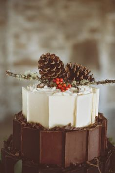 I live in Montana, it's nearly always Winter here, this would make an awesome fall or winter cake idea.