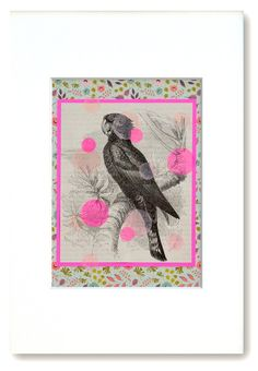 """Ref Nº 119 / """"One bird is in a cage and freedom is in mourning"""" Jacques … – Super Ideas DIY"""