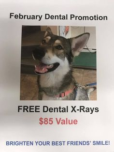 a636eb7a87 FREE Dental X-rays ($85 Value) With Any Dental Procedure During The Month