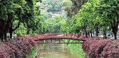 Petrópolis Petrópolis é uma cidade do estado do Rio de Janeiro, no Brasil. Ocupa uma área de 795,798 km², contando com uma população de 295 917 habitantes, segundo o Instituto Brasileiro de Geografia e Estatística. Wikipédia