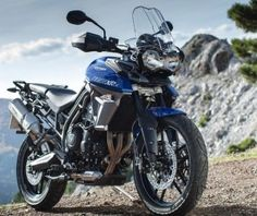 243 Best Motorcycles Images Motorbikes Motorcycles Choppers For Sale