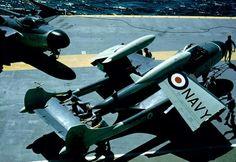 De Havilland Sea Venom FAW.53 Flight Deck, Venom, Melbourne, Fighter Jets, Aircraft, Sea, Aviation, The Ocean, Planes