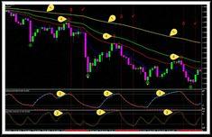 Mdz Price Action Indicator Forex Trading