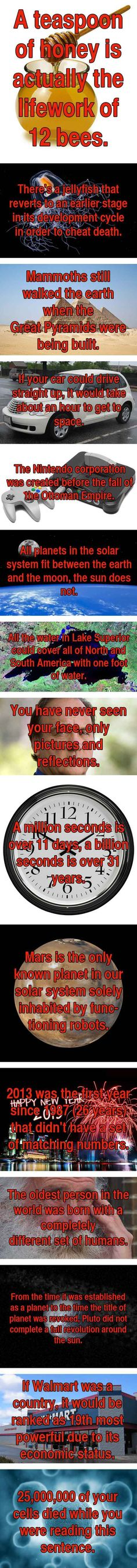 15 One-Sentence Facts