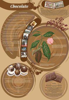 Infografía sobre el chocolate.