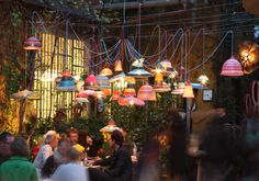 petlamp, lámparas hechas con residuos plásticos
