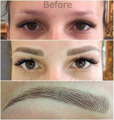 .Great Brow COLOR for Latimer and Shannon