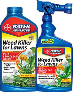 Bayer Advanced Weed Killer for Lawns. Supposed to be really effective.