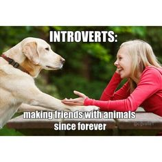 So true Introvert Quotes, Introvert Problems, Infp Personality, Behind Blue Eyes, Myers Briggs Personalities, Funny Memes, Cat Memes, Hilarious, Funny Dogs