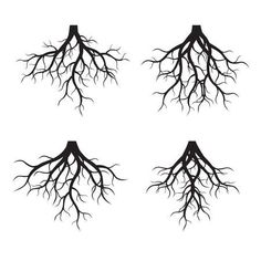Set of black tree Roots. Vector Illustration - Millions of Creative Stock Photos, Vectors, Videos and Music Files For Your Inspiration and Projects. Life Tattoos, Body Art Tattoos, Tattoos For Guys, Tatoos, Montreal Tattoo, Tree Roots Tattoo, Armband Tattoos, Mini Mundo, Dibujos Tumblr A Color
