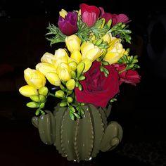 🍃💛 Μύρισε Άνοιξη 💛 🍃  #freesia #anemone #roses #redroses #rednaomi #red #yellowflower #yellowfreesia #yellow #redanemone #purpleanemone #pinkanemone #fresh #freshflower #smells #smellsbeautiful #spring #flowershow #flowershots #flowers #flowerlovers #loveandsun #love #colours #colourful #cactusclub #cactusvase #cactuslover #green #floristshop #florist #thessaloniki #greece #anthostheartofflowers #loveflowers #nofilters Love Flowers, Fresh Flowers, Yellow Flowers, Flower Show, Flower Art, Red Anemone, Thessaloniki, Red Roses, Greece
