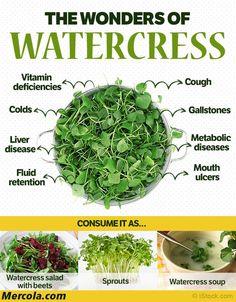 wonders of watercress