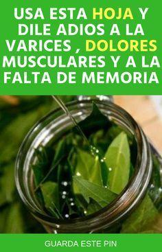 #laurel #dolores #musculares #memoria #varices #memoria #salid #remedios Holistic Medicine, Health Remedies, Life Hacks, Health Fitness, Healing, Tips, Food, Fresco, Chic