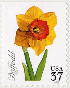 37c Daffodil single