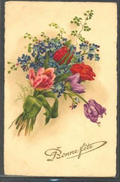 NX058-TULIPS-FORGET-ME-NOT-Fine-LITHO-PITTIUS-divided-back