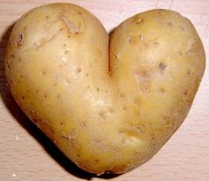 Do you want to grow potatoes. Well if you do then this is the ultimate information page about growing potatoes. If you want to grow your own crop of potatoes you need to check out this information. Funny Vegetables, Fruits And Vegetables, Gardening Vegetables, Heart In Nature, Funny Fruit, I Love Heart, Potato Soup, Raw Potato, Sweet Potato