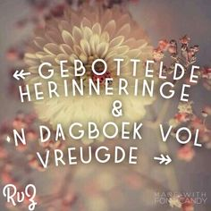 Afrikaans Afrikaans Quotes