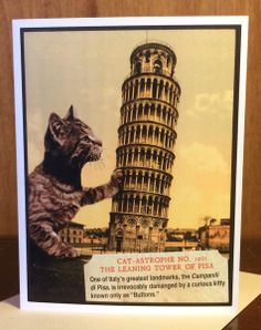 Cat-Astrophe No. 2: