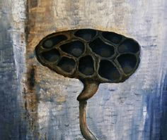 Lotus Seed Pod Seed Pods, Lotus, Insects, Seeds, Lotus Flower, Lily