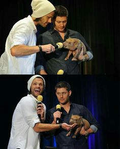 Jared looks like he wants the pig as a pet. Jensen look like he questions why Jared is feeding his dinner.