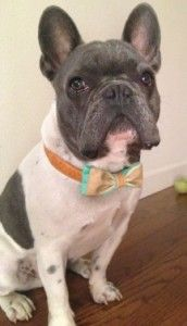How to make a recycled fabric bow tie - looks like this may have been Daisy's father