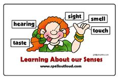 Learning about the 5 Senses. Some fun ideas!! #science #education