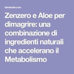 Zenzero e Aloe per dimagrire: una combinazione di ingredienti naturali che accelerano il Metabolismo