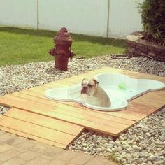 In ground dog pool and deck - also the doggy toilet trained area - poke hole in bottom of the kiddy pool with tube into the ground for draining from bath time or play time. Plug with regular bathtub stopper. You could also just pull out a regular kiddy pool for bath time and dump the water.  lol