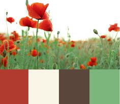possible color palet for our new home :)