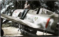 Lt. Hans Dortenmann, Fw.190 A-8, 2./JG 54. Villacoublay, France. June '44