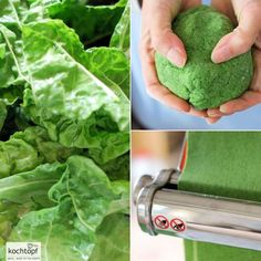 Grundrezept - Grüner Nudelteig natürlich mit Mangold gefärbt