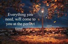 Trust in the process. Nourish and Celebrate❤️☀️