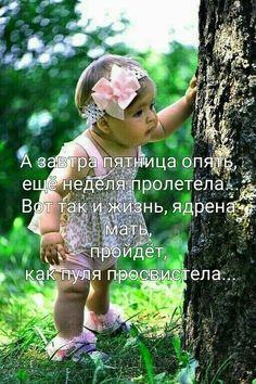 Гугл фото Happy Morning, Happy Day, Russian Humor, Beautiful Moon, Funny Moments, Life Hacks, Funny Pictures, Jokes, Education
