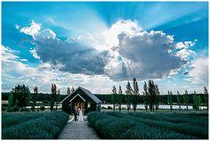 Fiona + Jeremy | Sault Daylesford Wedding - Ben Swinnerton Photography