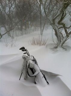 You know you love golf when....Weather? No worries!  #golf #deporte #pasion http://www.centroreservas.com/