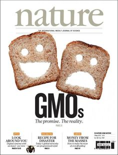 """There's a bit of dissonance here with the gravity of the discussion regarding GMOs and the use of silly faces cut into bread slices. But I think the playfulness is a nice first impression to the piece because it signals that the topic will be presented in an accessible manner and will include different perspectives (whilst offering critical analysis). The relative size and weight of """"GMO"""" in conjunction with the white space implicate its significance."""