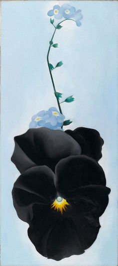 "nobrashfestivity: "" Georgia O'Keeffe, Black Pansy & Forget-Me-Nots (Pansy), 1926 Oil on canvas more "" Georgia O'keeffe, Savannah Georgia, Carolina Do Sul, South Carolina, Georgia O Keeffe Paintings, Wisconsin, New York Art, Famous Artists, American Artists"