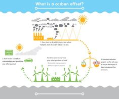 What are Carbon Offsets? explained by TerraPass