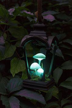 Snowmade by TheSnowmade Mushroom Lights, Mushroom Art, Deco Led, Paperclay, Nature Decor, Night Light, Cool Furniture, Lanterns, Diy Home Decor